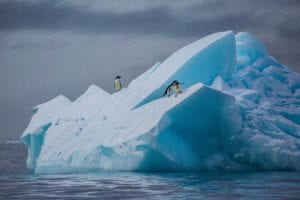 Photo of a blue iceberg with three penguins standing on it.