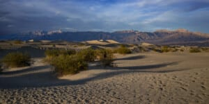 Photo of sand dunes in Death Valley